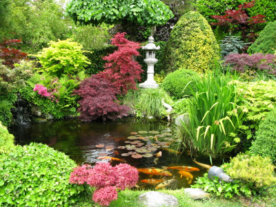 Gallery Of Best Images About Japanese Garden On Pinterest Gardens Small Japanese  Garden And Oriental With How To Build A Japanese Garden.